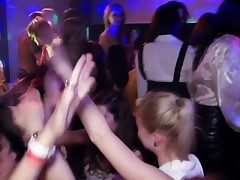 Hot uncompromised untrained party with sluts getting slammed
